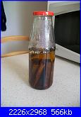 Liquore alla Cannella-100_2390-jpg
