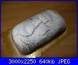 Plumcake al cioccolato-100_1801-jpg