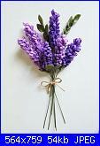 Sal un fiore per te: Lavanda e ........-f991a1630f163c2f57e40ac573fa9f43-jpg