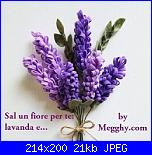 Sal un fiore per te: Lavanda e ........-sal-un-fiore-per-te-2-jpg