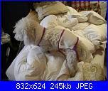 Moda a maglia per i nostri amici pelosi-pic_0516-jpg