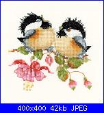 Uccellini e rondini-uccellini-jpg