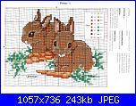 Coniglio / conigli/ coniglietto / coniglietti-c-jpg