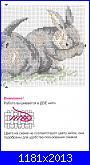 Coniglio / conigli/ coniglietto / coniglietti-q-2-jpg