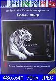 Animali esotici/selvatici-panna-j-27-white-tiger-jpg