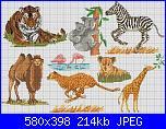 Animali esotici/selvatici-coala-tigre-zebra-camelo-leopardo-leoa-girafa-flamingo-jpg