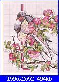 Uccellini e rondini-page%252088-jpg