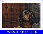 Cani-9879-56-jpg