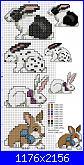 Coniglio / conigli/ coniglietto / coniglietti-conigli1-jpg