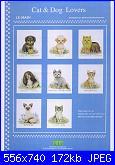 Cani-cat-dog-jpg