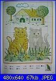 Gatti e Gattini-cat-9-jpg