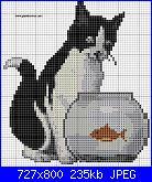 Gatti e Gattini-cat-10-jpg