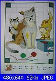 Gatti e Gattini-cat-9-1-jpg
