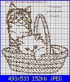 Gatti e Gattini-cat-4-jpg