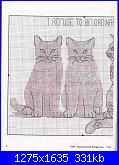 Gatti e Gattini-i-refuse-jpg