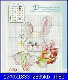 Coniglio / conigli/ coniglietto / coniglietti-hpqscan0023-jpg