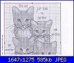 Gatti e Gattini-154015-eff6f-77607204-ua9f89-jpg