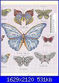 Farfalle-3-jpg