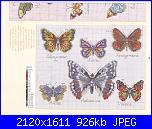 Farfalle-9-jpg