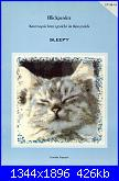 Gatti e Gattini-cp-98-19-sleepy-jpg