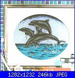Delfini-pc-jpg