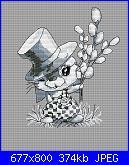 Coniglio / conigli/ coniglietto / coniglietti-rabbit-willow-jpg