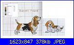 Cani-cane-jpg