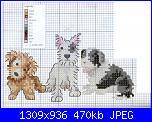 Cani-cane-3-jpg