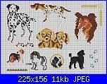 Cani-11433big-jpg