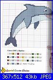 Delfini-08-jpg