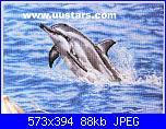 Delfini-2556302644-jpg