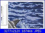 Delfini-2556309851-jpg