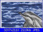 Delfini-2556307105-jpg