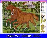 Cavallo / Cavalli-cavalli-jpg