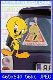 Bebe' on board / Bimbo a bordo / Titti a bordo-looney_toones-102-jpg