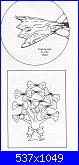 Alberi e Foglie-trees-crown-explanation-jpg