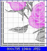 Rose-4881c-jpg