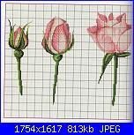 Rose-img083-jpg