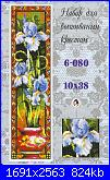 Iris-iris-klart-6-080-jpg