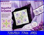 Iris-beautiful-irises-46-jpg