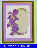 Iris-ovale-2-jpg