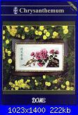 Crisantemo-126e582d64a8-jpg
