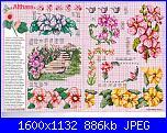 Tavole di fiori-2_309-jpg