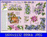 Tavole di fiori-20_119-jpg
