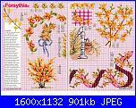Tavole di fiori-43_78-jpg