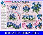 Tavole di fiori-48_54-jpg