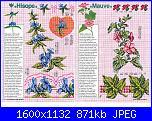 Tavole di fiori-55_38-jpg