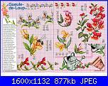 Tavole di fiori-53_43-jpg