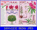 Tavole di fiori-64_34-jpg