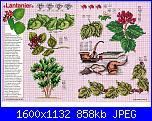 Tavole di fiori-63_26-jpg